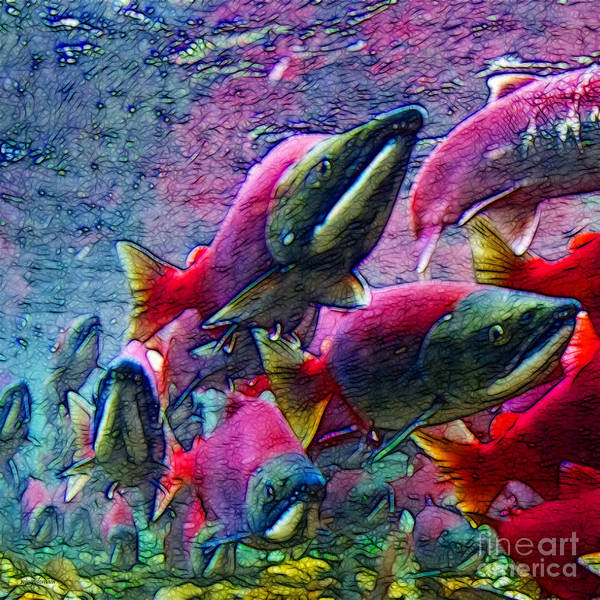 Big Fish Poster featuring the photograph Salmon Run - Square - 2013-0103 by Wingsdomain Art and Photography