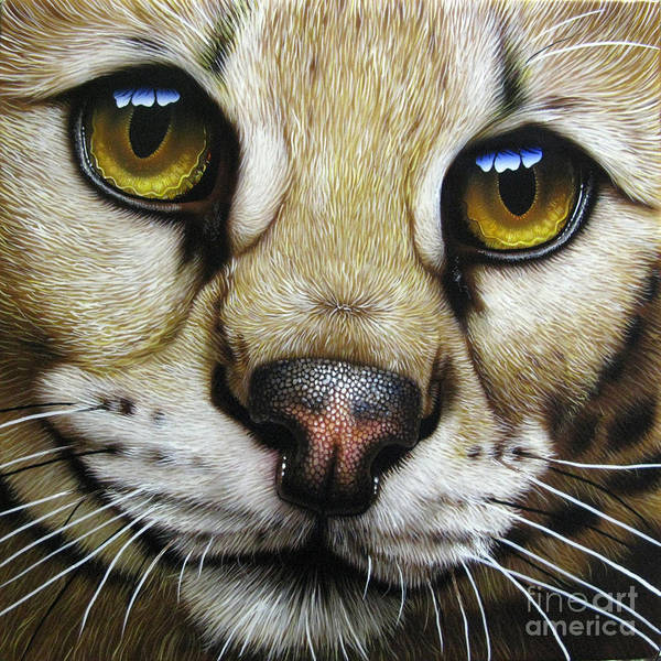 Serval Poster featuring the painting Serval by Jurek Zamoyski