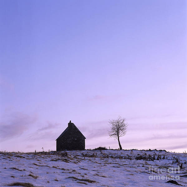 Outdoors Poster featuring the photograph Silhouette Of A Farm And A Tree. Cezallier. Auvergne. France by Bernard Jaubert