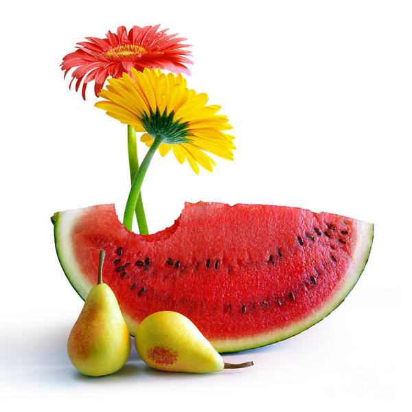 Arrangement Poster featuring the photograph Spring Watermelon by Carlos Caetano