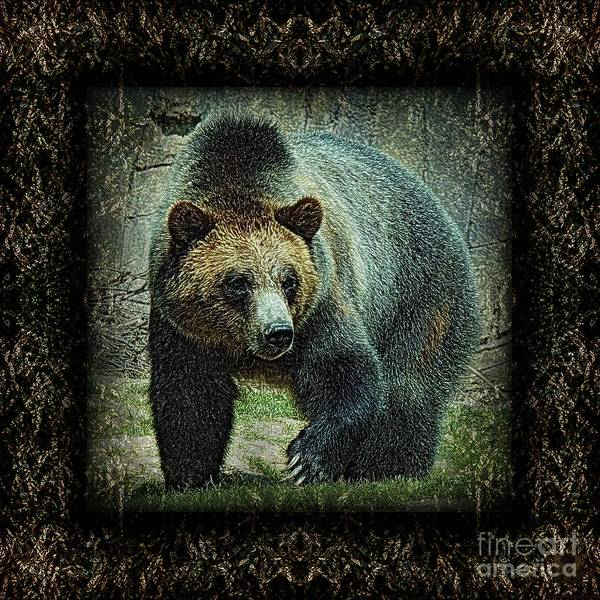 Bear Poster featuring the photograph Sq Grizz 6k X 6k Grn Gold Wd2 by Dale Crum