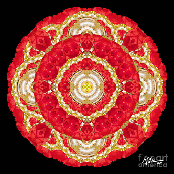 Mandala Poster featuring the photograph Sweet Impatience by Karen Jordan Allen