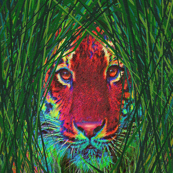 Tiger Poster featuring the digital art Tiger In The Grass by Jane Schnetlage