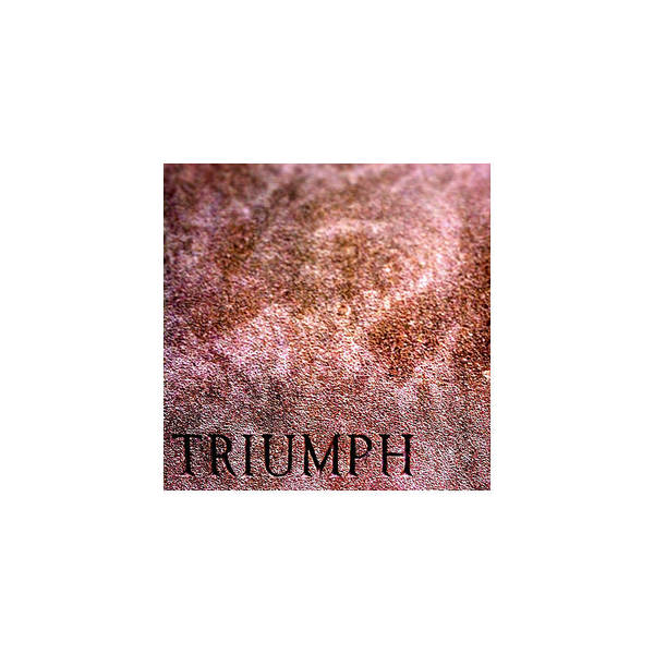 Triumph Poster featuring the photograph Triumph_09.23.12 by Paul Hasara