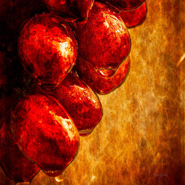 Rain Poster featuring the photograph Wet Grapes Three by Bob Orsillo