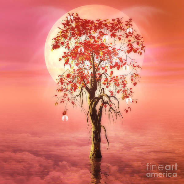Tree Of Heaven Poster featuring the digital art Where Angels Bloom by John Edwards