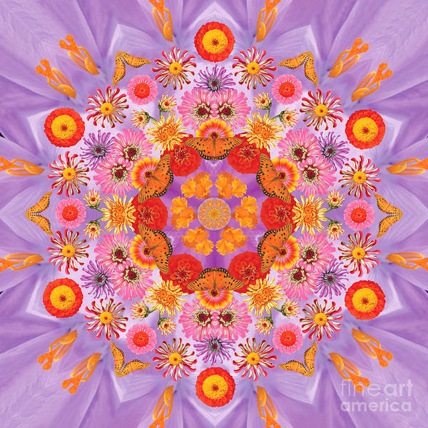 Rainbow Poster featuring the photograph Zinna Flower Mandala by Susan Bloom
