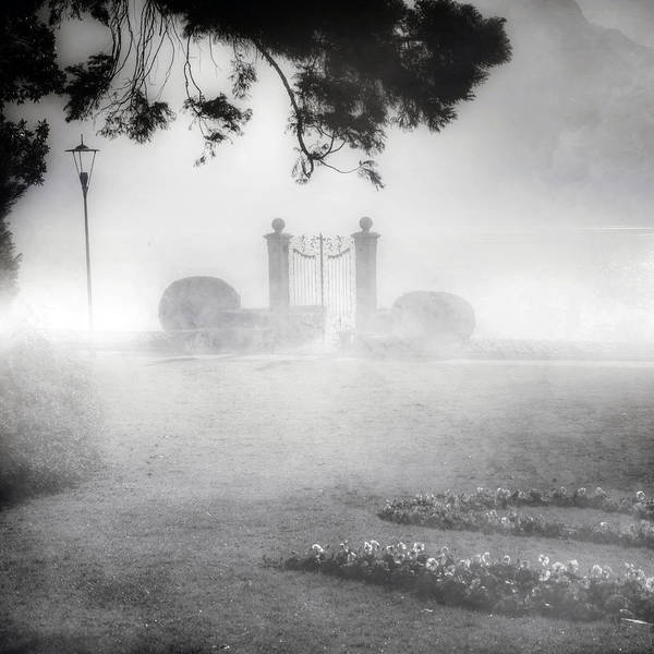 Gate Poster featuring the photograph Gateway To The Lake by Joana Kruse
