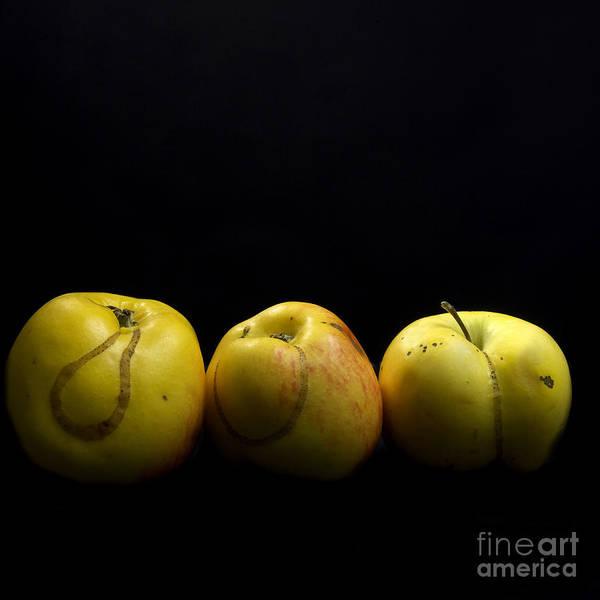 Agriculture Poster featuring the photograph Apples by Bernard Jaubert