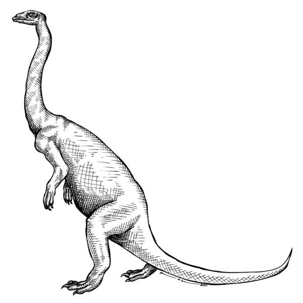 Cartoon Poster featuring the drawing Anchisaurus - Dinosaur by Karl Addison