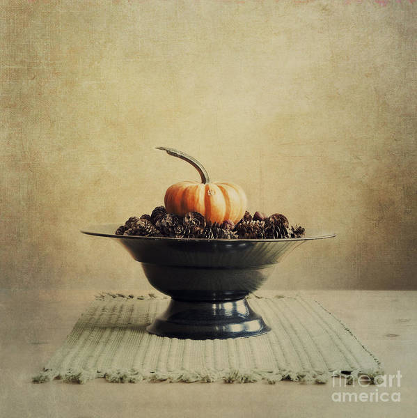 Bowl Poster featuring the photograph Autumn by Priska Wettstein