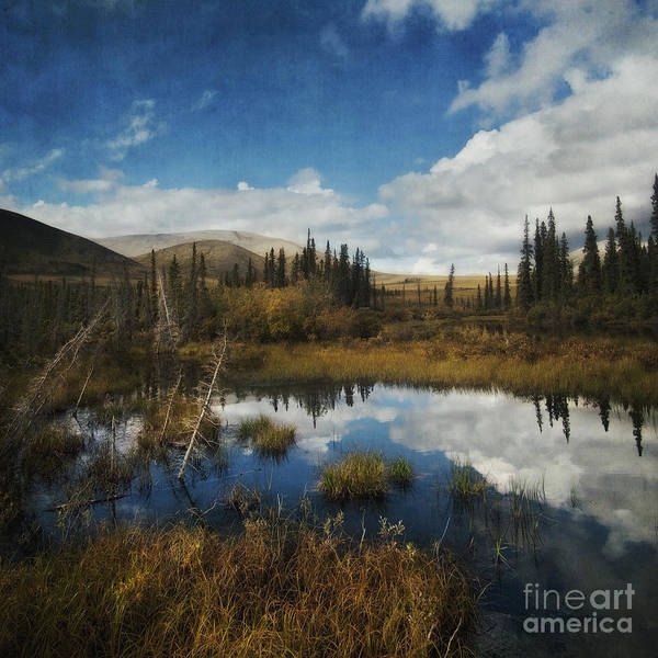 Dempster Poster featuring the photograph Blissful Lone Land by Priska Wettstein