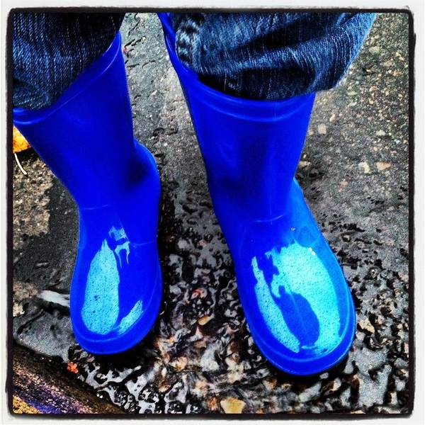 Blue Poster featuring the photograph Blue Rain Boots by Julie Gahan