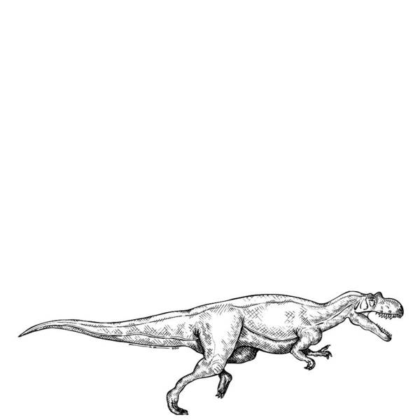 Cartoon Poster featuring the drawing Ceratosaurus - Dinosaur by Karl Addison