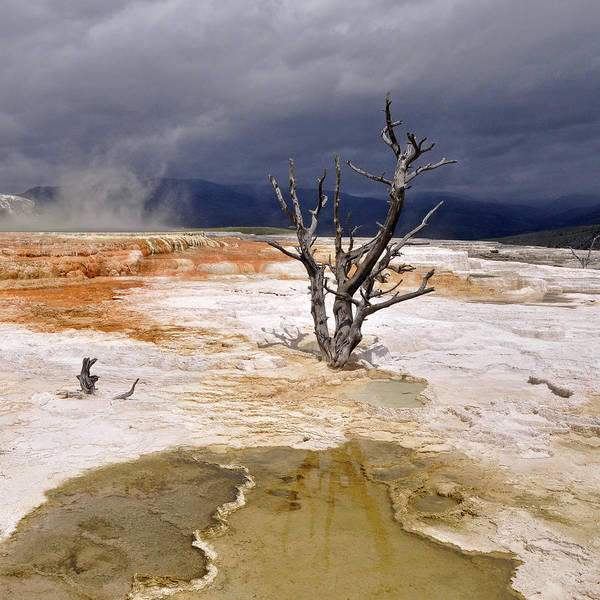 Square Poster featuring the photograph Clearing Storm At Mammoth Hot Springs by Photo by Mark Willocks