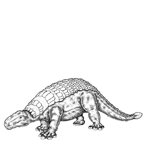 Cartoon Poster featuring the drawing Edmontonia - Dinosaur by Karl Addison