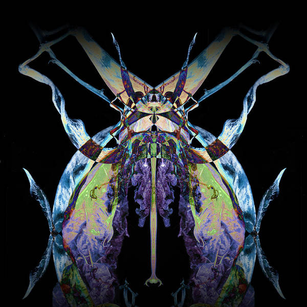 Psychedelic Poster featuring the photograph Freaky Bug Plant by David Kleinsasser