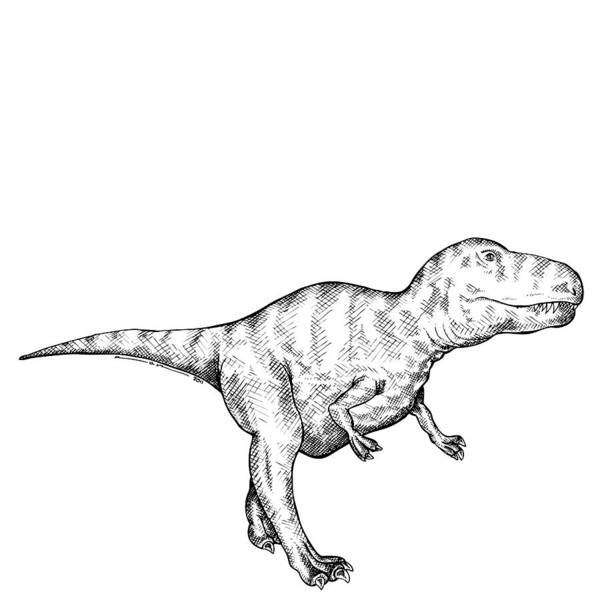 Cartoon Poster featuring the drawing Gorgosaurus - Dinosaur by Karl Addison