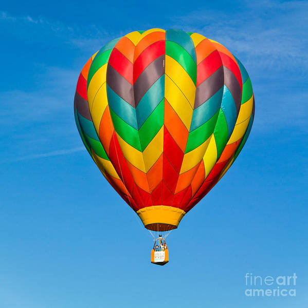 Hot Air Balloon Poster featuring the photograph Great Reno Balloon Race by L J Oakes