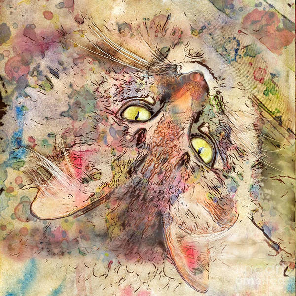 Cats Poster featuring the digital art Kitty Fluffs by Marilyn Sholin