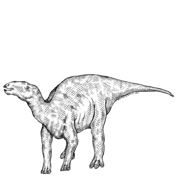 Cartoon Poster featuring the drawing Kritosaurus - Dinosaur by Karl Addison