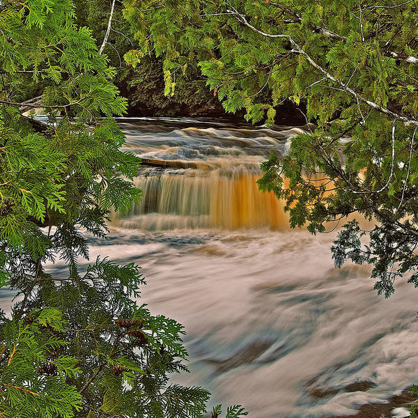 Lower Tahquamenon Falls Poster featuring the photograph Lower Tahquamenon 6187 by Michael Peychich