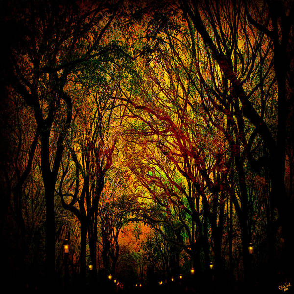 Autumn Poster featuring the photograph Magick Mall by Chris Lord