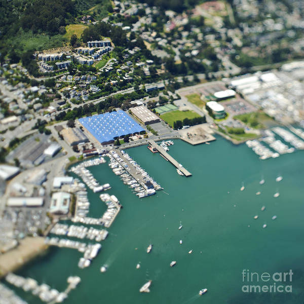 Aerial Poster featuring the photograph Marina And Coastal Community by Eddy Joaquim