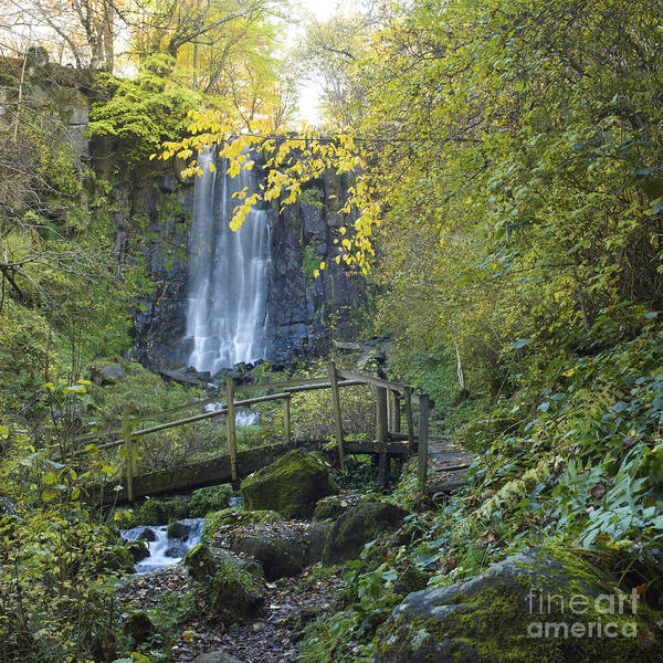 Nature Poster featuring the photograph Waterfall Of Vaucoux. Puy De Dome. Auvergne. France by Bernard Jaubert