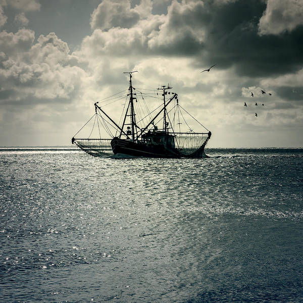 Sea Poster featuring the photograph Fishing Boat by Joana Kruse