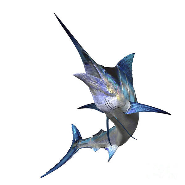 Marlin Poster featuring the digital art Marlin by Corey Ford