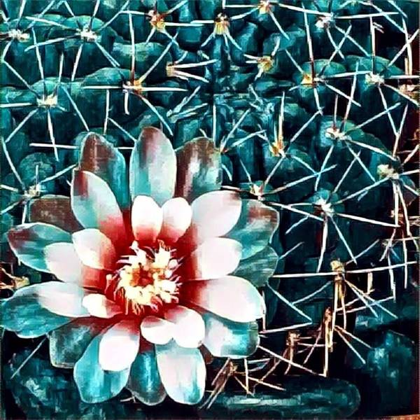 Poster featuring the digital art Cacti by Melinda Sullivan Image and Design