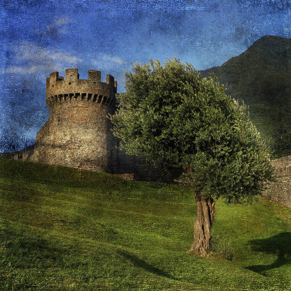 Castle Poster featuring the photograph Castle by Joana Kruse