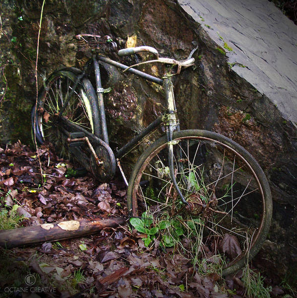 Irish Poster featuring the photograph Abandoned Bicycle by Tim Nyberg