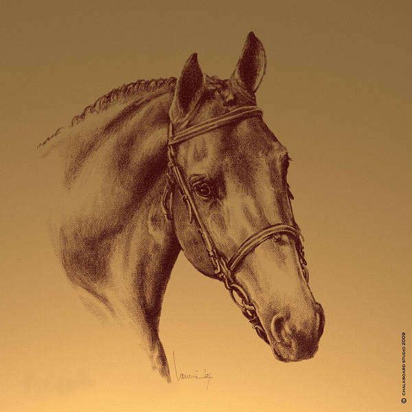 Horse Poster featuring the digital art Achilles by Laurie Musser