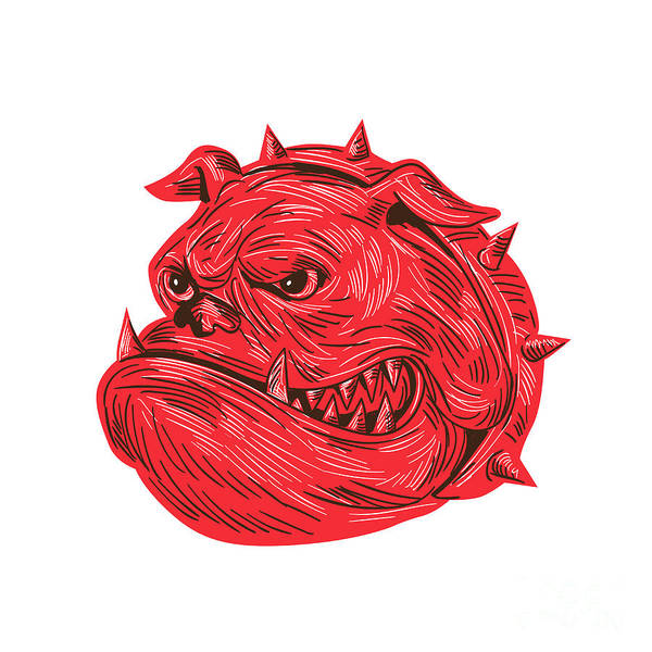 Drawing Poster featuring the digital art Angry Bulldog Head Drawing by Aloysius Patrimonio