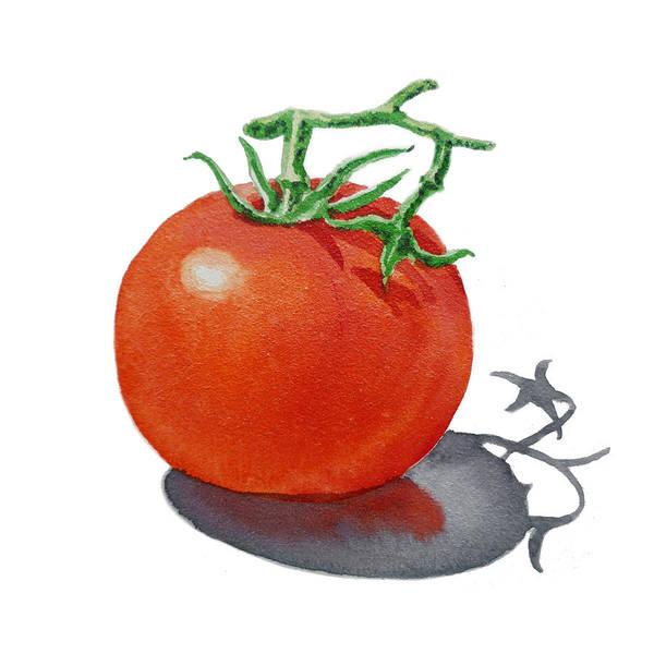 Tomato Poster featuring the painting Artz Vitamins Tomato by Irina Sztukowski