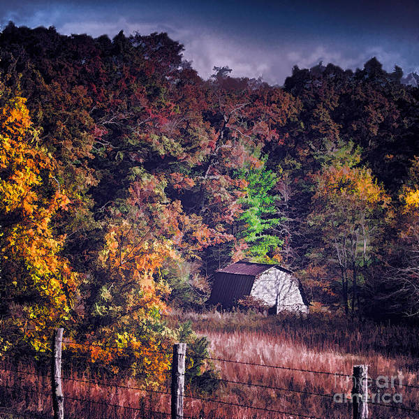 Fall Colors Poster featuring the photograph Autumn Hideaway In The Blue Ridge Ap by Dan Carmichael