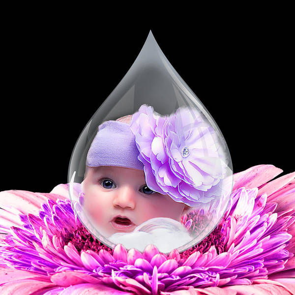 Baby Poster featuring the photograph Baby Dewdrop by Trudy Wilkerson
