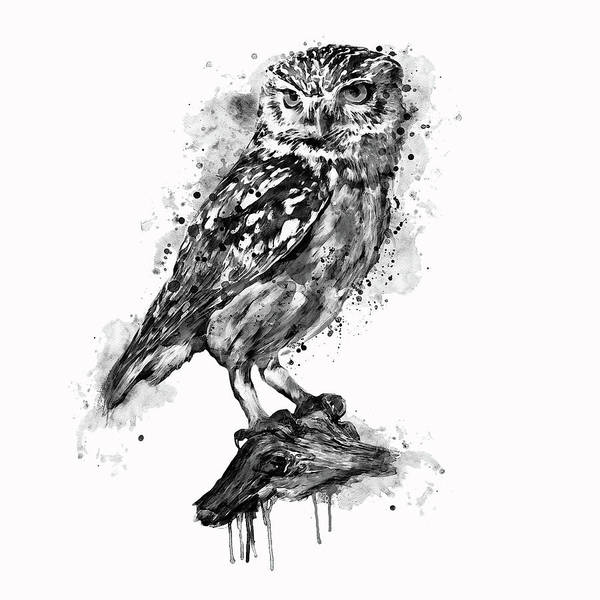 Black and white poster featuring the mixed media black and white owl by marian voicu