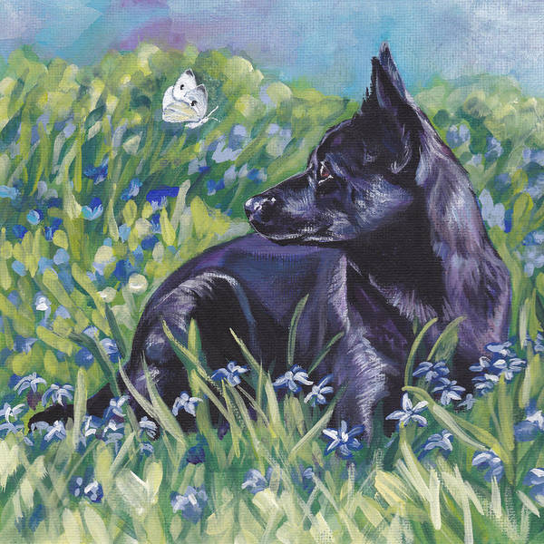 Black Poster featuring the painting Black Australian Kelpie by Lee Ann Shepard