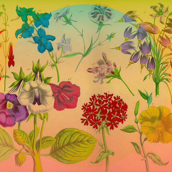 Floral Poster featuring the digital art Bright Flowers by Connie Goldman