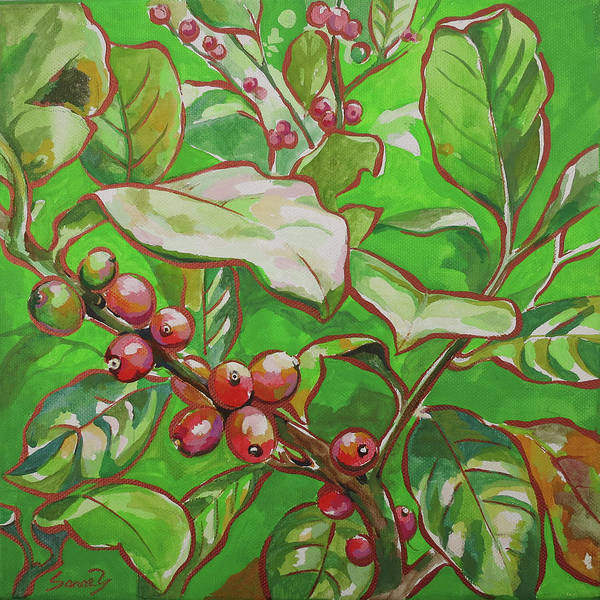 Coffee Cherries Poster featuring the painting Coffee Cherries by Sanae Yamada