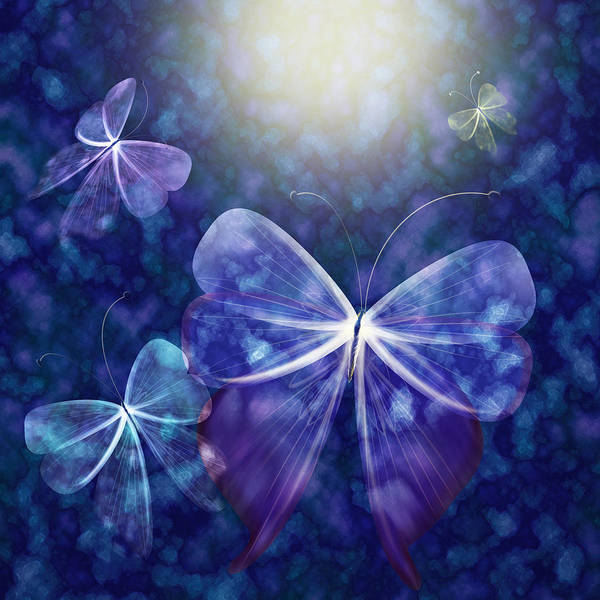 Butterfly Poster featuring the digital art Come Into The Light by Gae Helton
