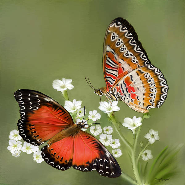 Butterfly Poster featuring the digital art Common Lacewing Butterfly by Thanh Thuy Nguyen