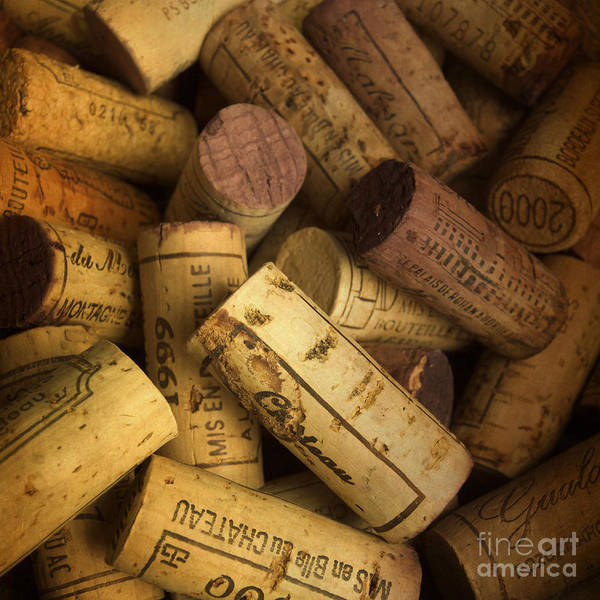 Bouchons Poster featuring the photograph Corks by Bernard Jaubert