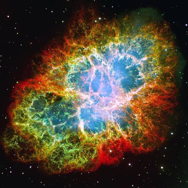 Astronomy Poster featuring the photograph Crab Nebula by Don Hammond
