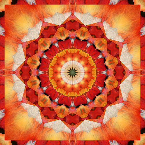 Mandalas Poster featuring the photograph Dreaming by Bell And Todd