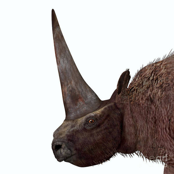 Elasmotherium Poster featuring the painting Elasmotherium Head by Corey Ford