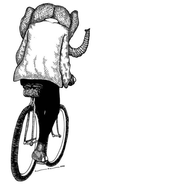Drawing Poster featuring the drawing Elephant Bike Rider by Karl Addison